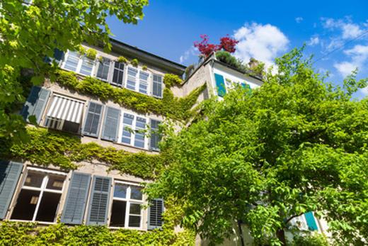 Altbau mit begrünter Fassade © Tiberius Gracchus, fotolia.com