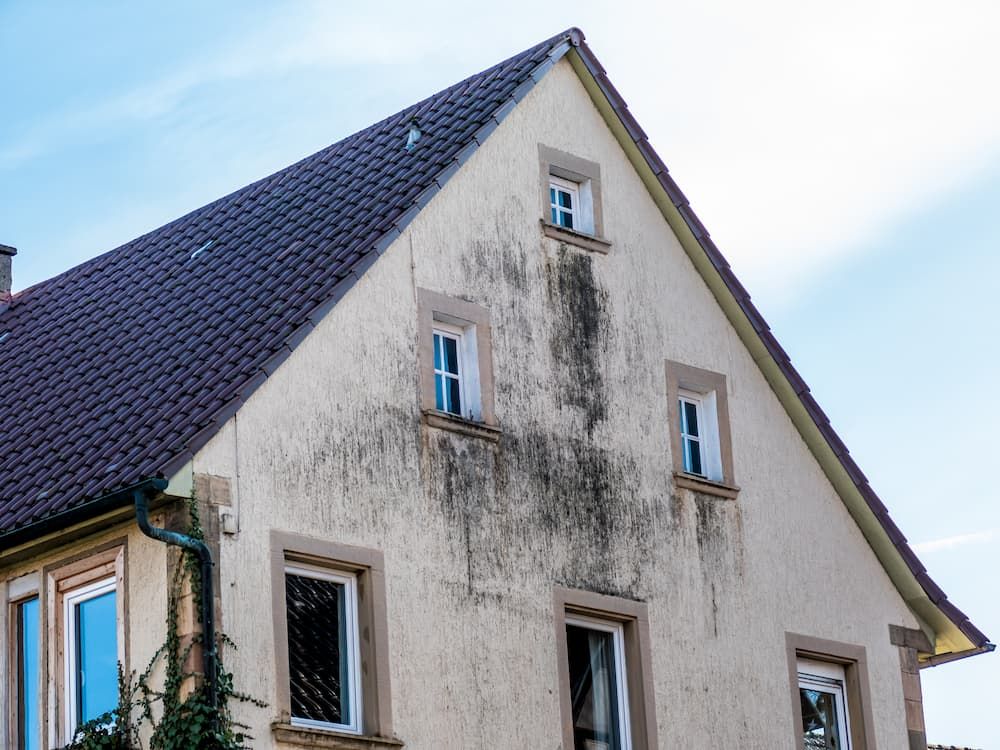 Altbaufassade: Feucht und verschmutzt © focus finder, stock.adobe.com