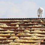 Dachsanierung: Asbest erkennen und beseitigen