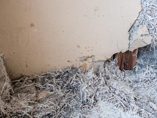 Gut bekannt Asbest-Ratgeber: Hintergründe, Vorkommen, Sanierung und Entsorgung VA83