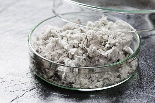 Test auf Asbest © Tsuboya, fotolia.com