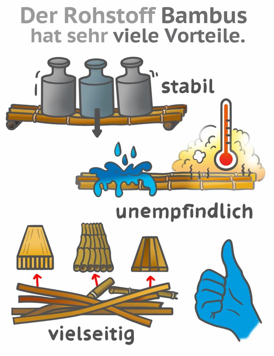 Der Rohstoff Bambus hat viele Vorteile