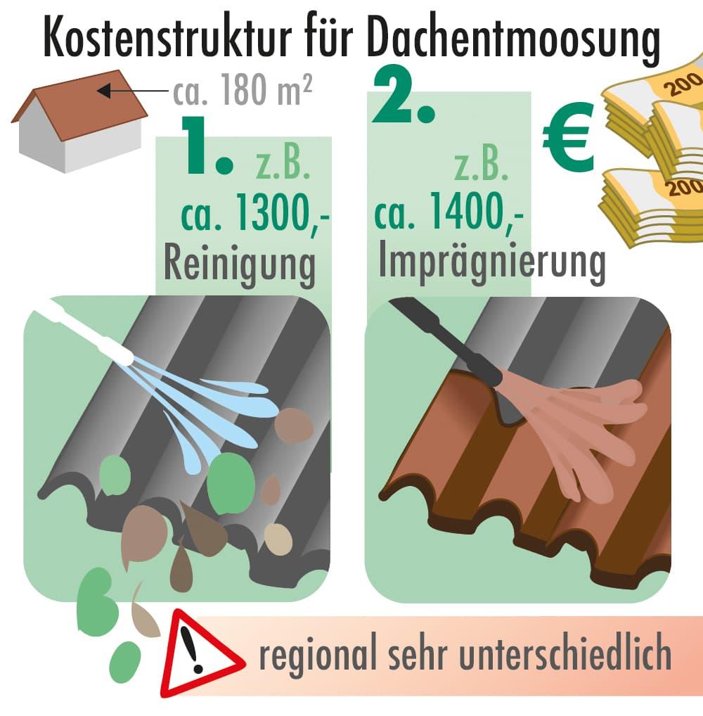 Kostenstruktur für die Dachentmoosung