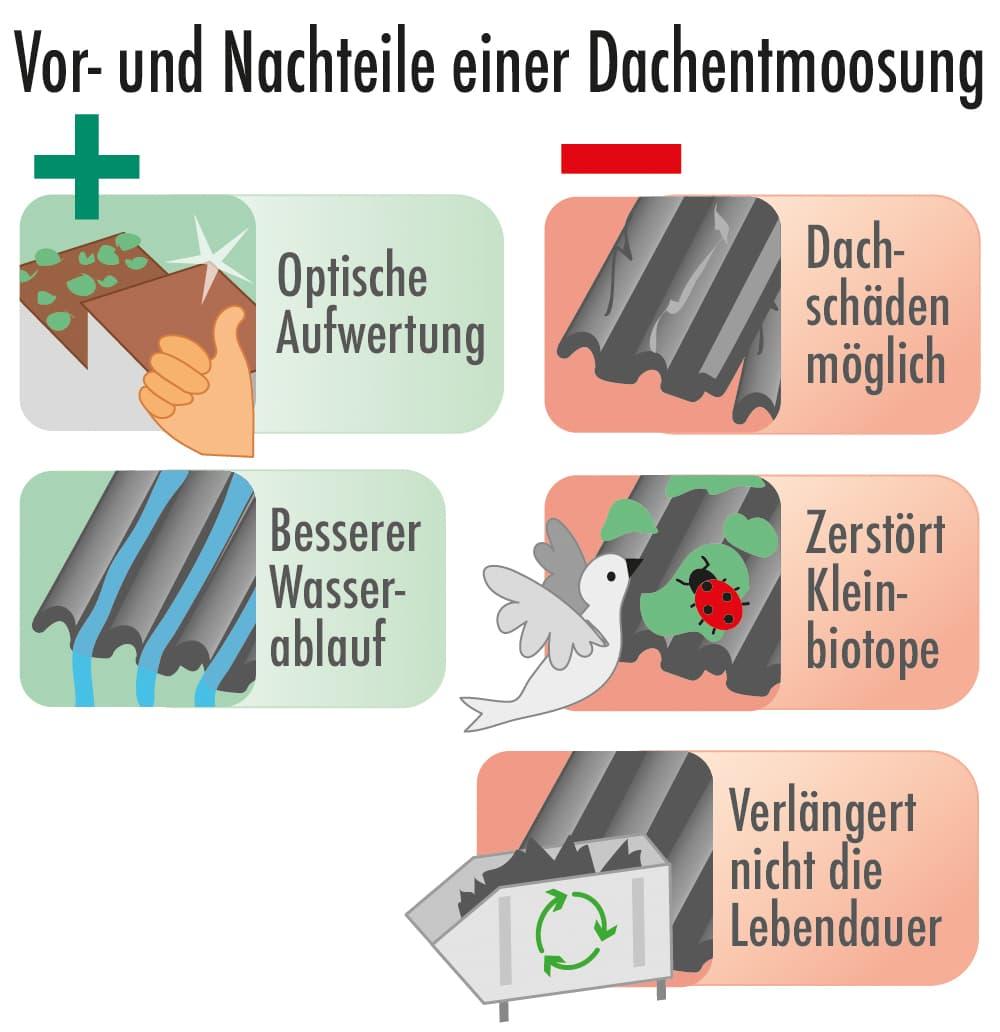Vorteile und Nachteile einer Dachentmoosung