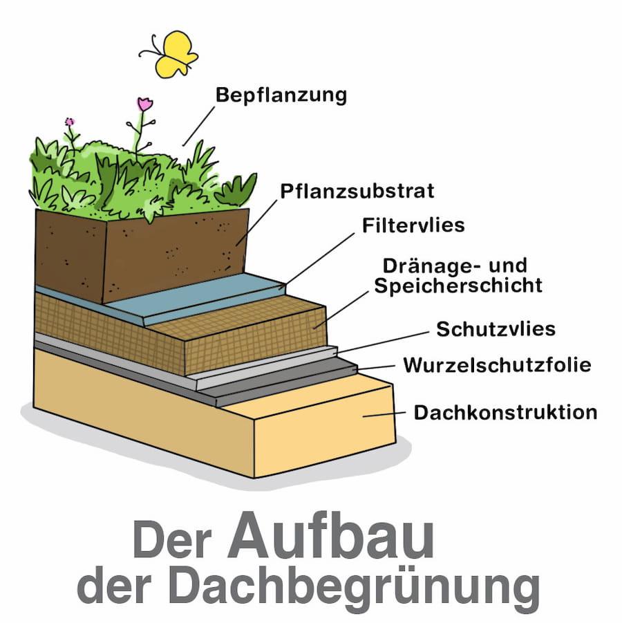 Der Aufbau der Dachbegrünung