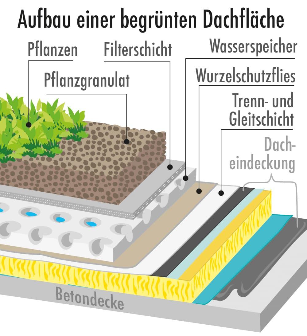 Aufbau einer begrünten Dachfläche
