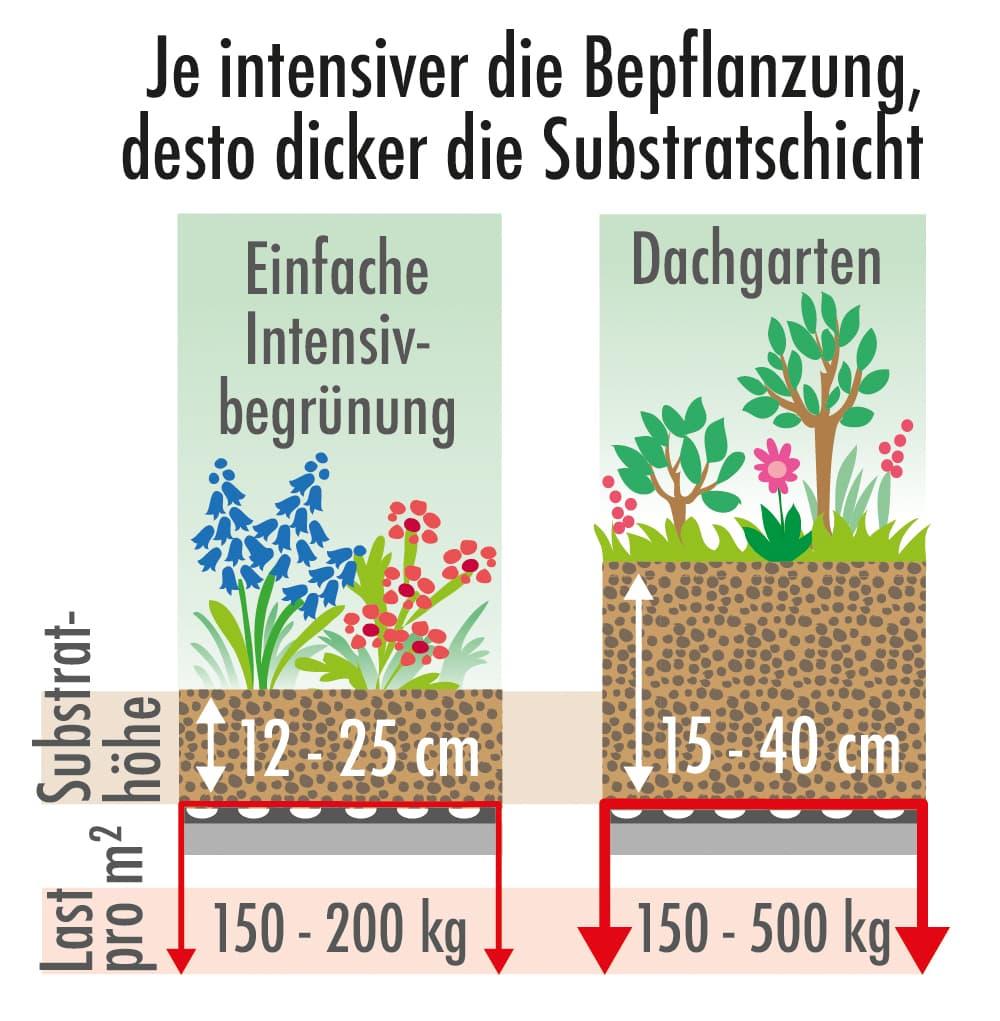 Je intensiver die Bepflanzung desto dicker die Substratschicht
