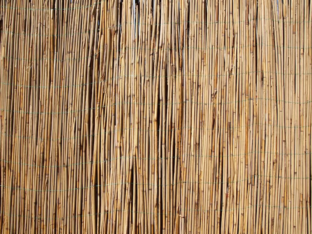 Daemmstoff Schilf © Annett Seidler, stock.adobe.com