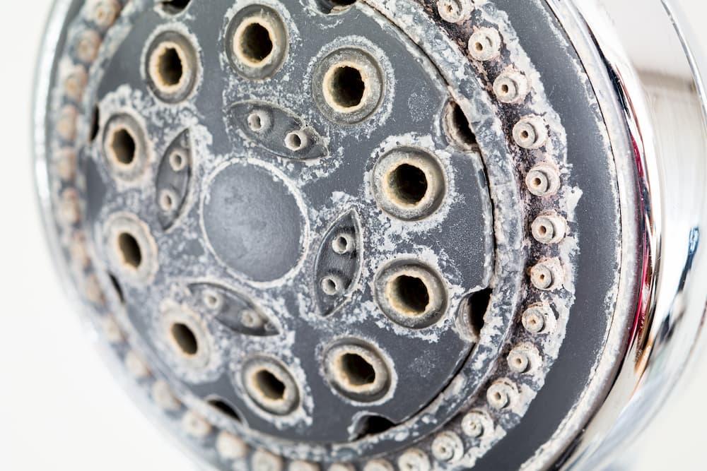 Duschbrause mit Kalkablagerungen © Octavian, stock.adobe.com