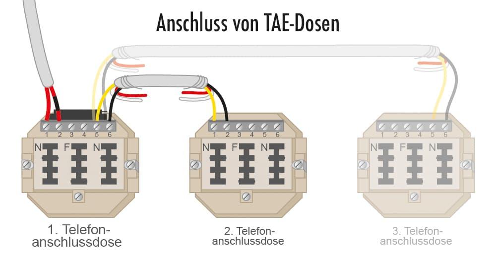 Anschluss von TAE-Dosen