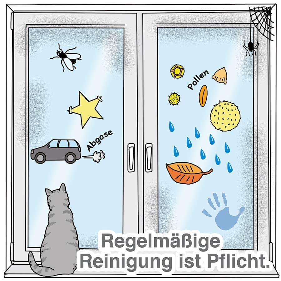 Fenster und Wintergarten regelmäßig reinigen