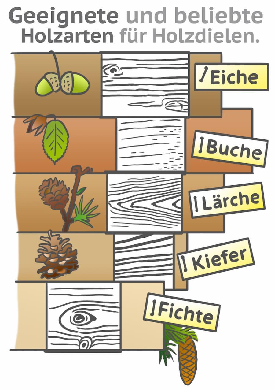 Geeignete Holzarten für Holzdielen
