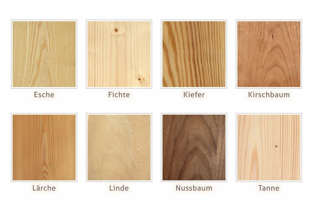 Holzarten in der Übersicht © sunnychicka, stock.adobe.com