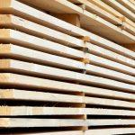 Das spezifische Gewicht von Holz