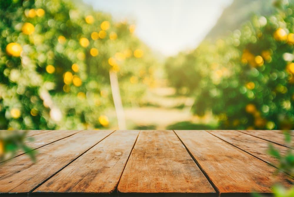 Holztisch im Garten © escapejaja, stock.adobe.com