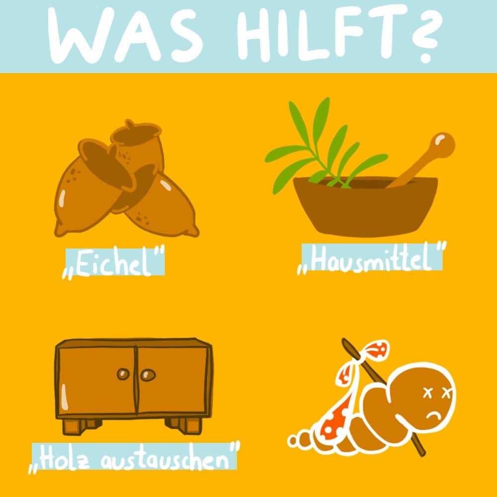 Was hilft gegen Holzwürmer?