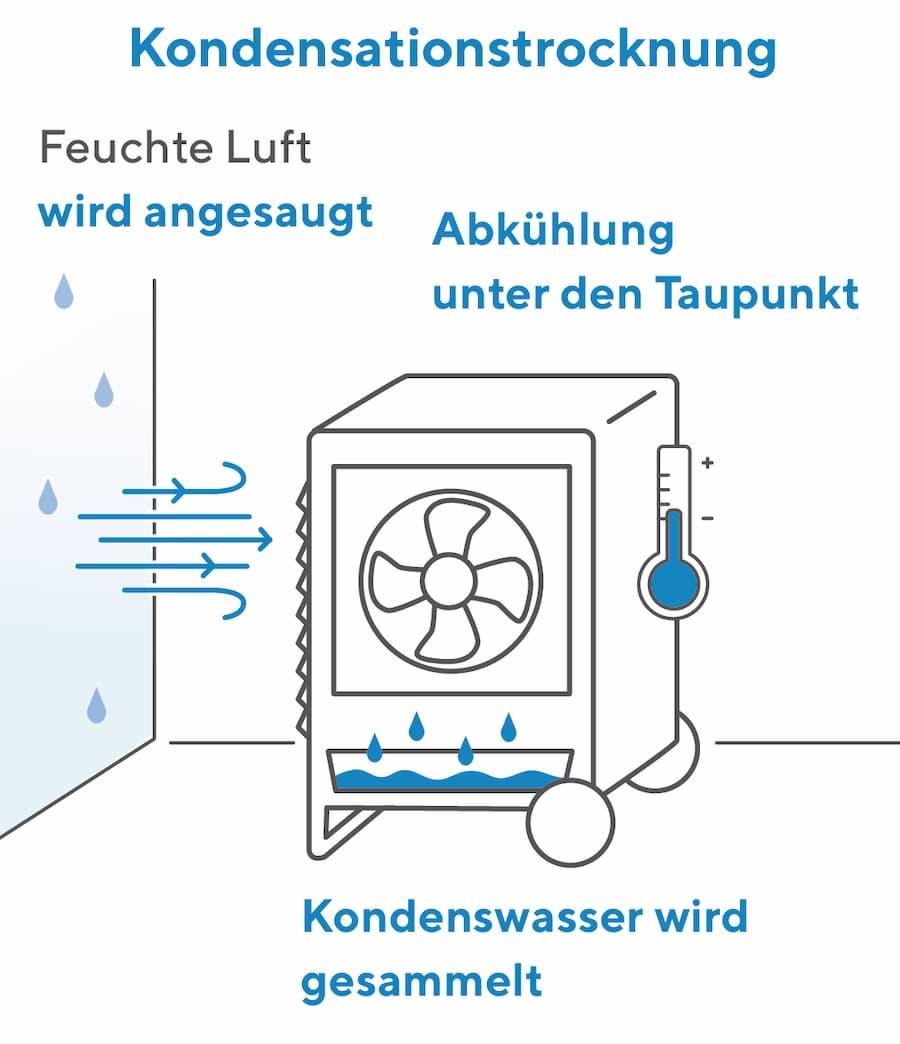 Bekämpfung der Feuchtigkeit: Kondensationstrocknung