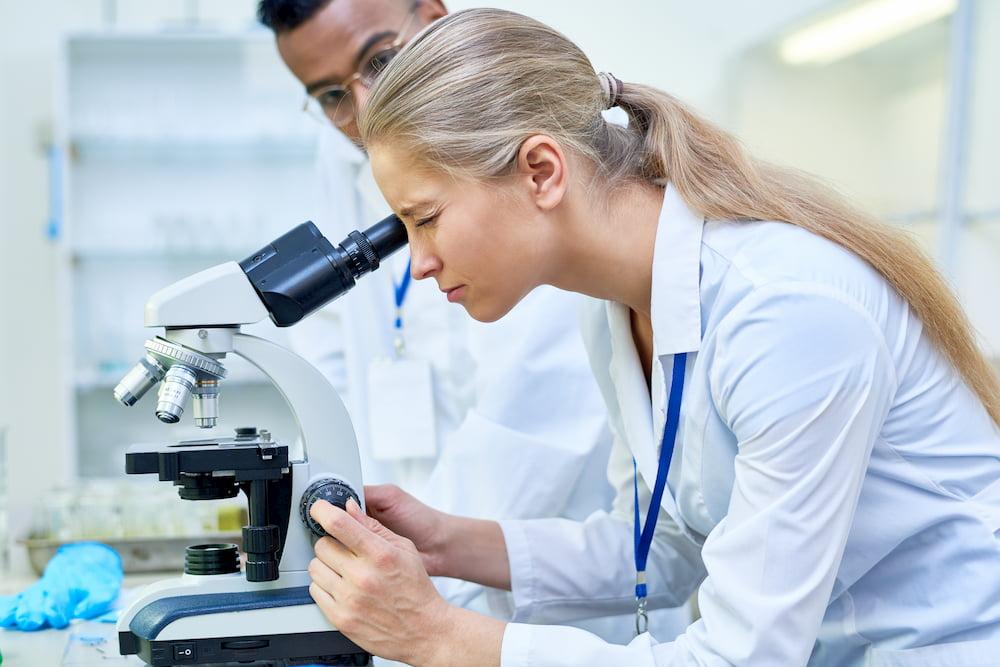 Proben werden im Labor untersucht © Seventyfour, stock.adobe.com