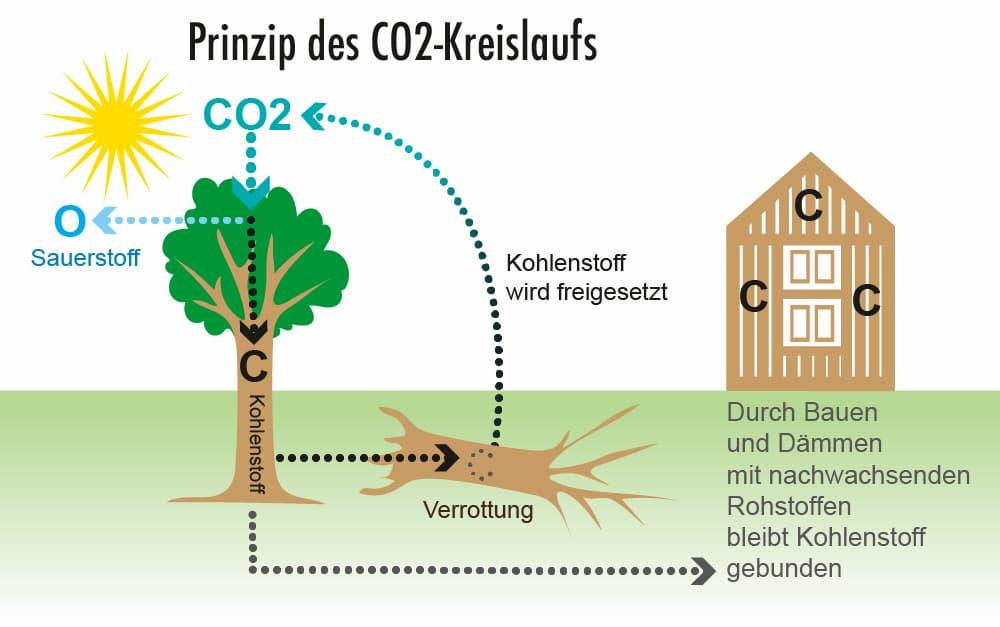 Prinzip des CO2-Kreislaufs