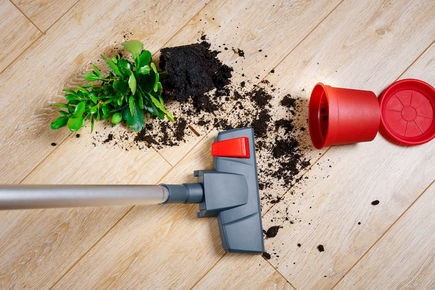 Holzboden: Dreck und Schmutz direkt entfernen © kulikov922, stock.adobe.com