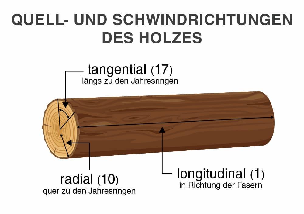 Quell- und Schwindrichtungen des Holzes