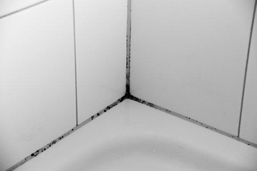 Schimmel im Badezimmer © mekcar, fotolia.com