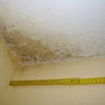 Schäden bei Oberflächenwasser