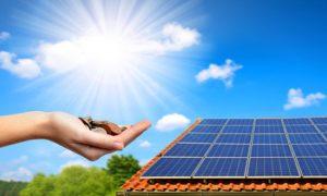 Photovoltaik: Kompakte Infos