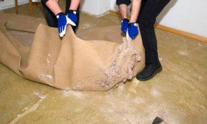 Teppichboden entfernen