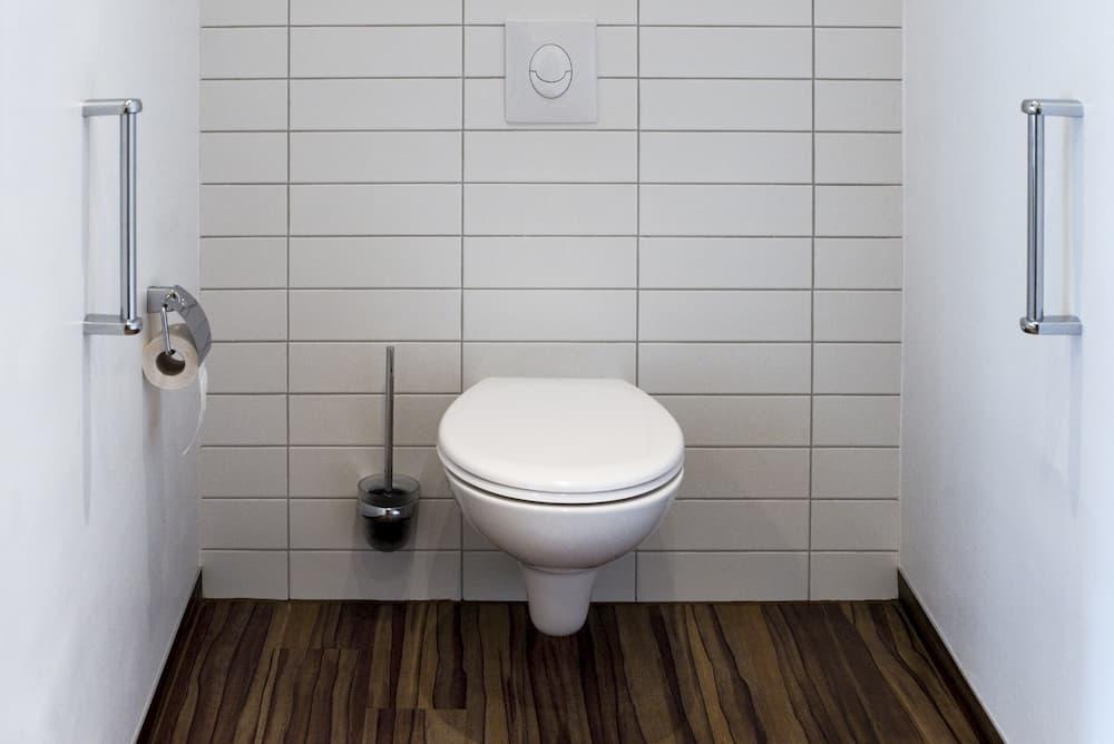 Toilette mit seitlichen Haltegriffen © Tatjana Balzer, stock.adobe.com