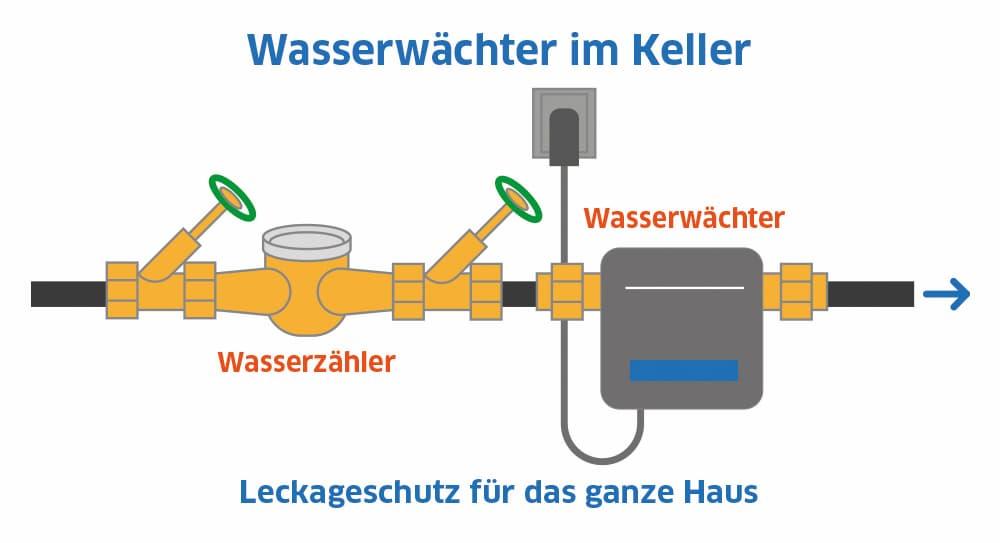 Wasserwächter im Keller