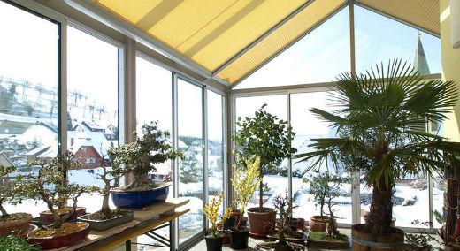 Wintergarten Gestalten- Welche Pflanzen Kommen Rein? - 2015-10-06 ... Wintergarten Gestalten Welche Pflanzen Kommen Rein